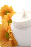 Face cream Royalty Free Stock Photo