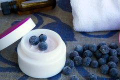 Face cream with blueberry seed oil Royalty Free Stock Image