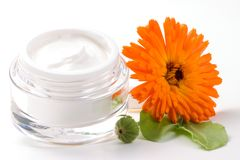 Face cream and calendula flower. Closeup of jar of moisturizing face cream and fresh marigold flower Royalty Free Stock Photos