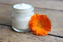 Face cream and calendula flower.Cosmetics. Royalty Free Stock Photos