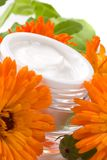 Face cream and calendula flowers Royalty Free Stock Photo