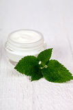 Face cream in glass jar with green leaf of urtica Royalty Free Stock Photography
