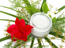 Face cream with green leaves Royalty Free Stock Photos