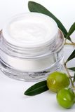 Face cream and olive twig Stock Images
