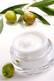 Face cream and olive twig Stock Image
