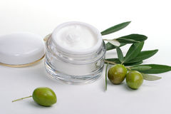 Face cream and olive twig Royalty Free Stock Image