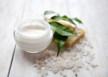 Face cream with  sea salt Royalty Free Stock Images