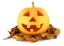 Face da abóbora de Halloween com folhas de outono Imagem de Stock