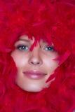Face da menina em um frame de penas vermelhas Fotos de Stock Royalty Free