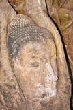 Face de Buddha coberta pelo templo de Mahathat das raizes Foto de Stock Royalty Free