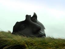 Face de pedra Imagens de Stock