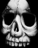 Face of Death. Portrait of a scary skull stock illustration