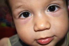Face do bebê Fotos de Stock Royalty Free