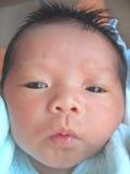 Face do bebê Imagem de Stock