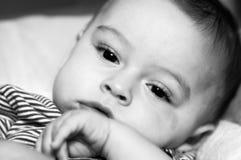Face do bebê Imagem de Stock Royalty Free