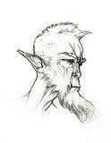 Face do duende ilustração royalty free