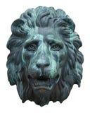 Face do leão Imagens de Stock