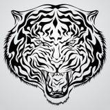 Face do tigre ilustração royalty free