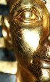 A face dourada Fotografia de Stock Royalty Free