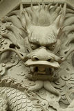 Face of dragon. Royalty Free Stock Photos