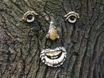 Face em uma árvore fotografia de stock royalty free