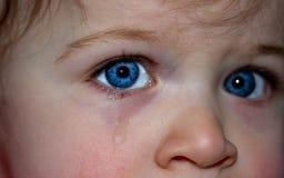 Face, Eyebrow, Cheek, Nose Stock Photo