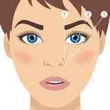 Face and eyebrow mapping. Trimming. Perfect brow shape vector sc Royalty Free Stock Photos