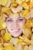 Face in foliage Royalty Free Stock Images