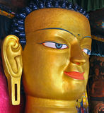 Face of gautam buddha Royalty Free Stock Photography