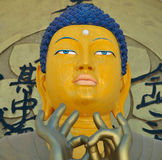 Face of gautam buddha Stock Photography