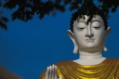 Face, Gautama Buddha, Sky, Head stock photos