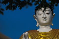 Face, Gautama Buddha, Sky, Head royalty free stock images