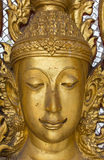 Face of golden budda Royalty Free Stock Images