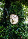 A face in the green leafs Royalty Free Stock Images