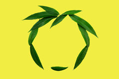 The face of green leaves - аbstract summer symbol and good mood on a yellow background. Minimal style. The face of green leaves - аbstract summer symbol and Stock Photos