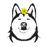 Face of a happy smiling happy dog with a yellow flower. On his head. Spring dog Royalty Free Stock Images