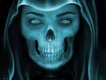 Face, Head, Bone, Jaw royalty free stock image