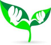 Face leaf stock illustration