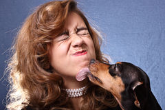 Face licking Stock Photography