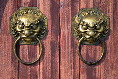 Face of lion. For knocking the door Royalty Free Stock Photos