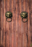 Face of lion. For knocking the door Stock Images