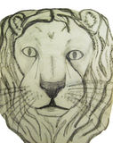 The face of the lion Royalty Free Stock Photo