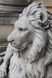 Face of the lion in the garden of Beylerbeyi Palace, Istanbul. Stock Photo