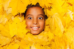Face of a little African boy in autumn leaves Royalty Free Stock Photography