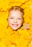 Face of a little blond girl in autumn leaves Stock Photo