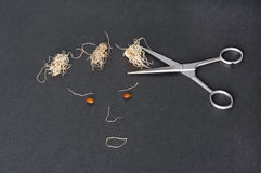 a face made with carob seeds and garlic roots and scissors, cutting garlic hair Royalty Free Stock Photography