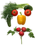 Face made out of different vegetables stock image