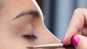 Face Makeup Anti Glare Brush stock video