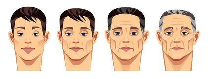 Face of man at different ages, vector illustration, human face   Stock Photo