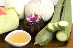 Face mask and body wrap honey and Angled Loofah, Angled gourd Royalty Free Stock Image